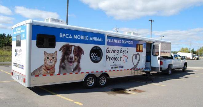 Mobile veterinary trailer